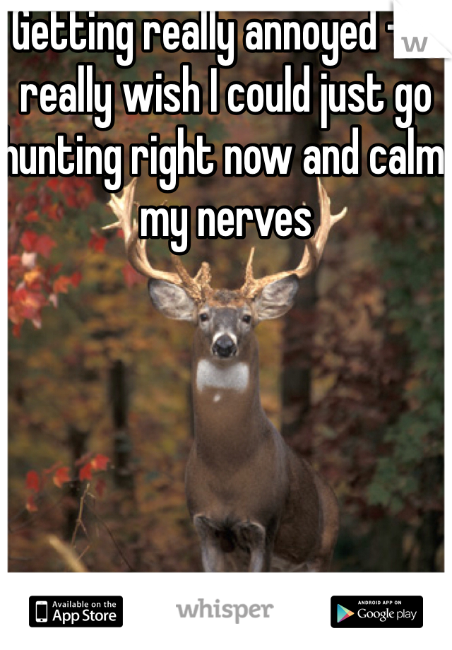 Getting really annoyed -_- really wish I could just go hunting right now and calm my nerves