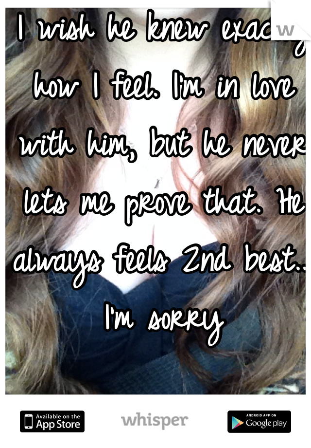 I wish he knew exactly how I feel. I'm in love with him, but he never lets me prove that. He always feels 2nd best... I'm sorry