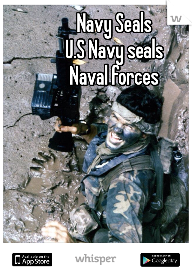 Navy Seals  U.S Navy seals Naval forces