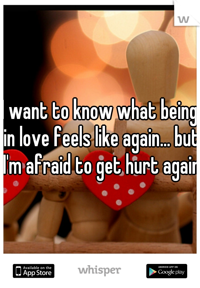 I want to know what being in love feels like again... but I'm afraid to get hurt again