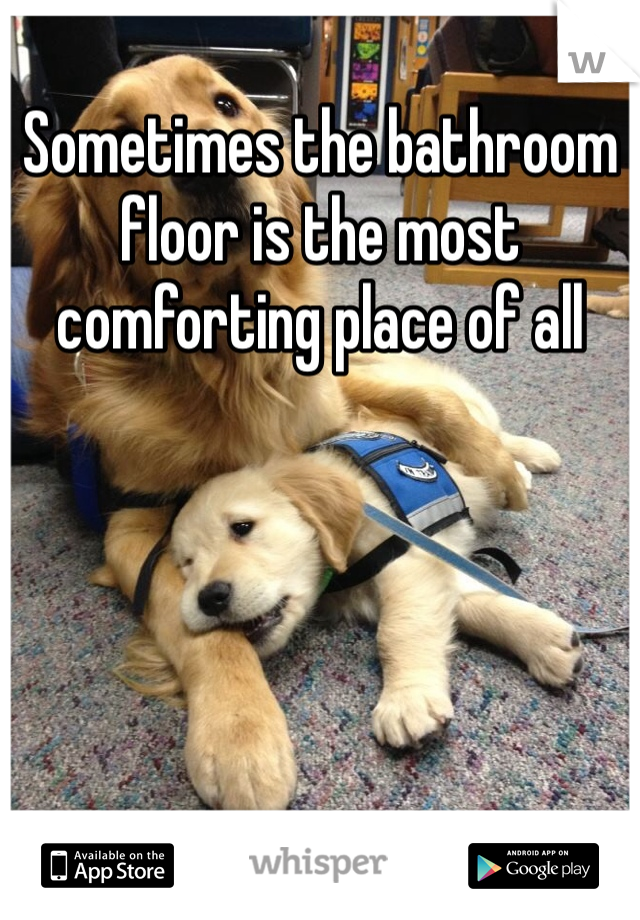Sometimes the bathroom floor is the most comforting place of all