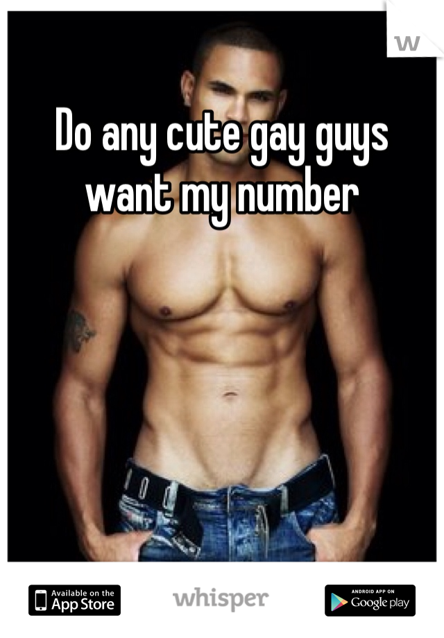 Do any cute gay guys want my number