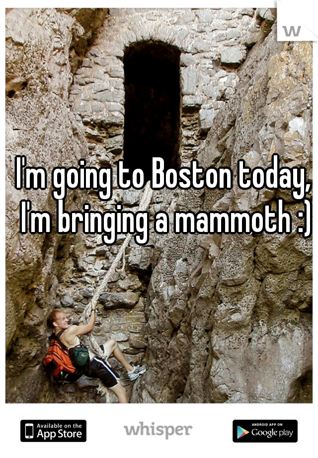 I'm going to Boston today, I'm bringing a mammoth :)