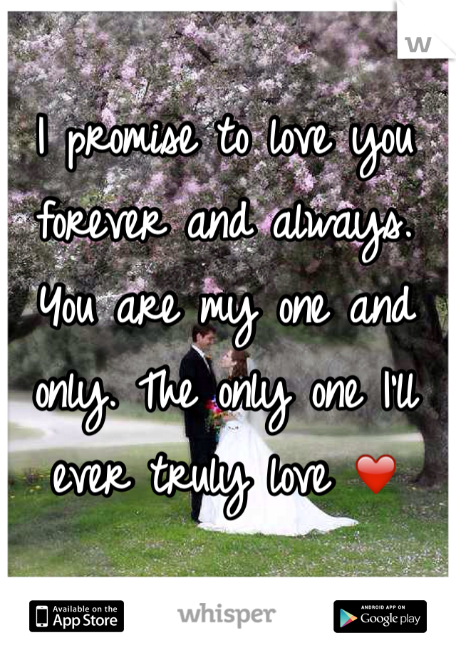 I promise to love you forever and always. You are my one and only. The only one I'll ever truly love ❤️