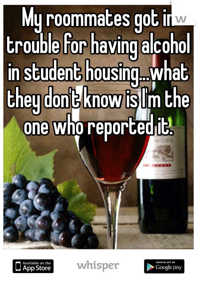 My roommates got in trouble for having alcohol in student housing...what they don't know is I'm the one who reported it.