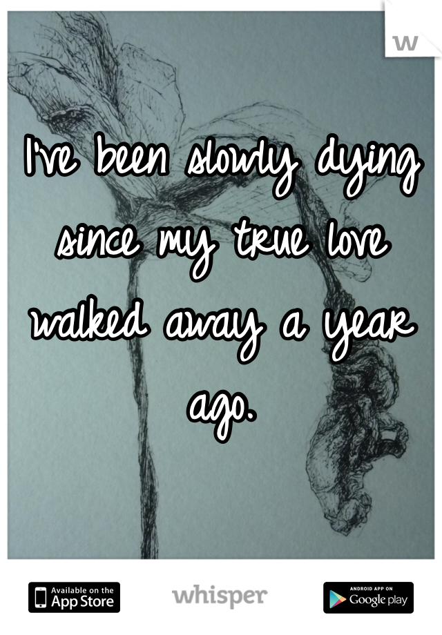 I've been slowly dying since my true love walked away a year ago.