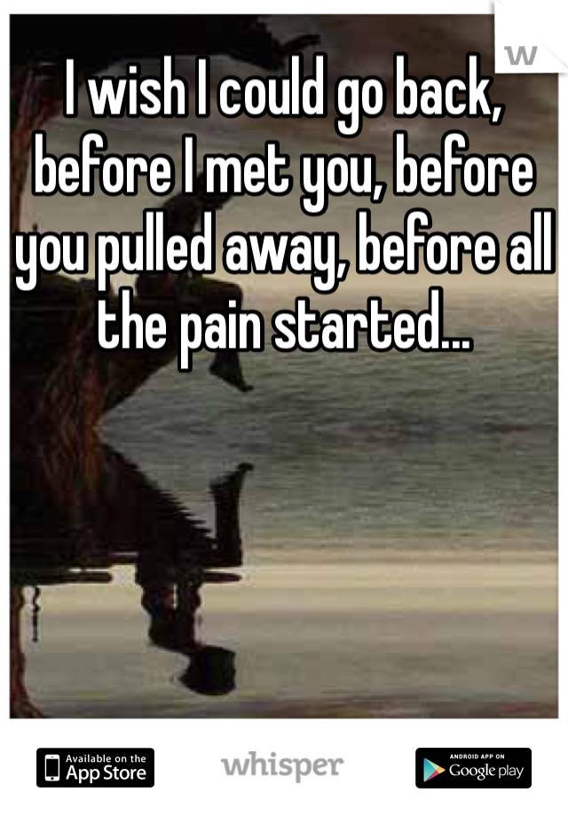 I wish I could go back, before I met you, before you pulled away, before all the pain started...