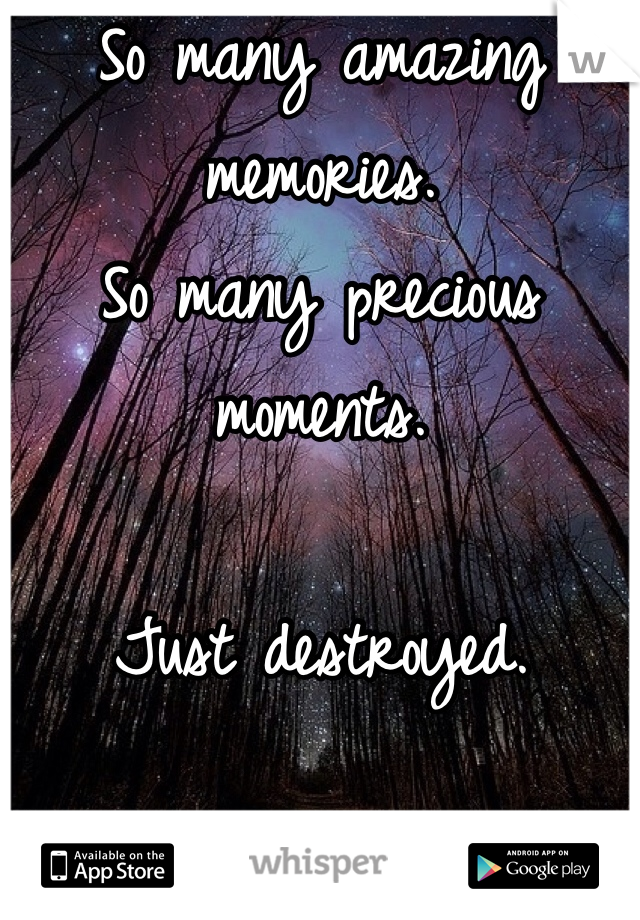So many amazing memories.  So many precious moments.  Just destroyed.