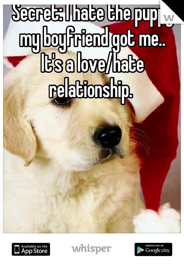 Secret: I hate the puppy my boyfriend got me..  It's a love/hate relationship.