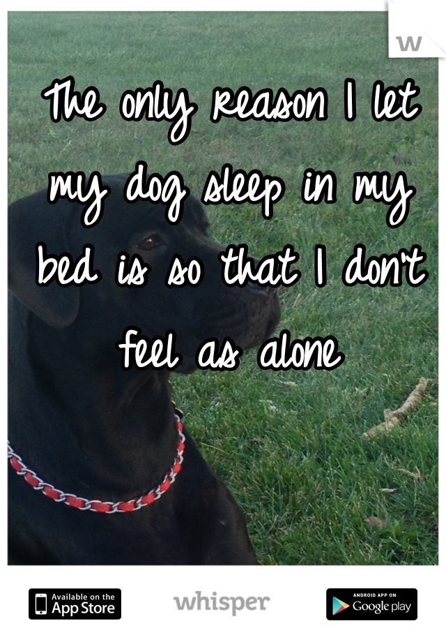 The only reason I let my dog sleep in my bed is so that I don't feel as alone
