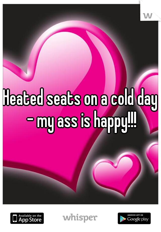 Heated seats on a cold day - my ass is happy!!!