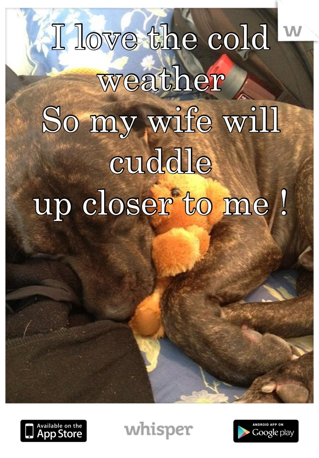 I love the cold weather  So my wife will cuddle  up closer to me !