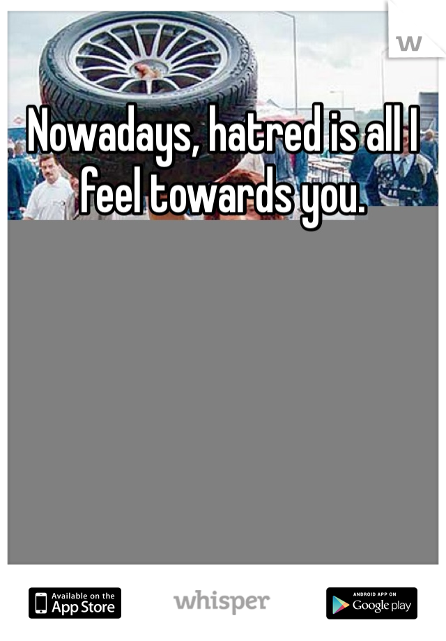 Nowadays, hatred is all I feel towards you.