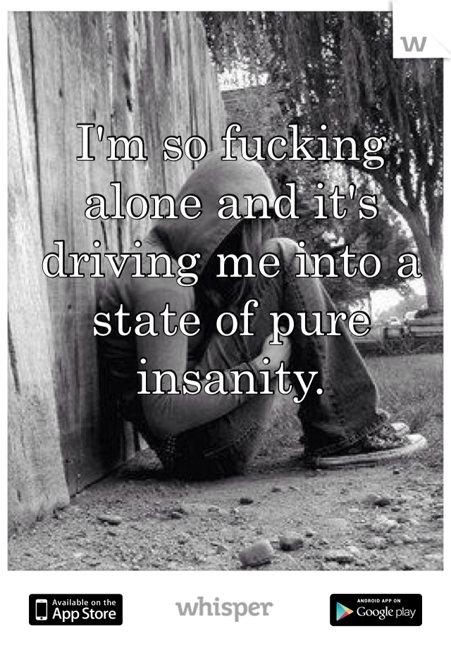 I'm so fucking alone and it's driving me into a state of pure insanity.