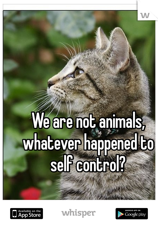 We are not animals, whatever happened to self control?