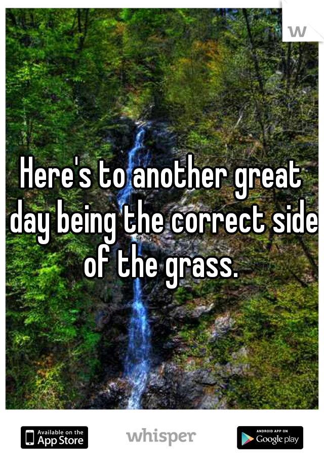 Here's to another great day being the correct side of the grass.