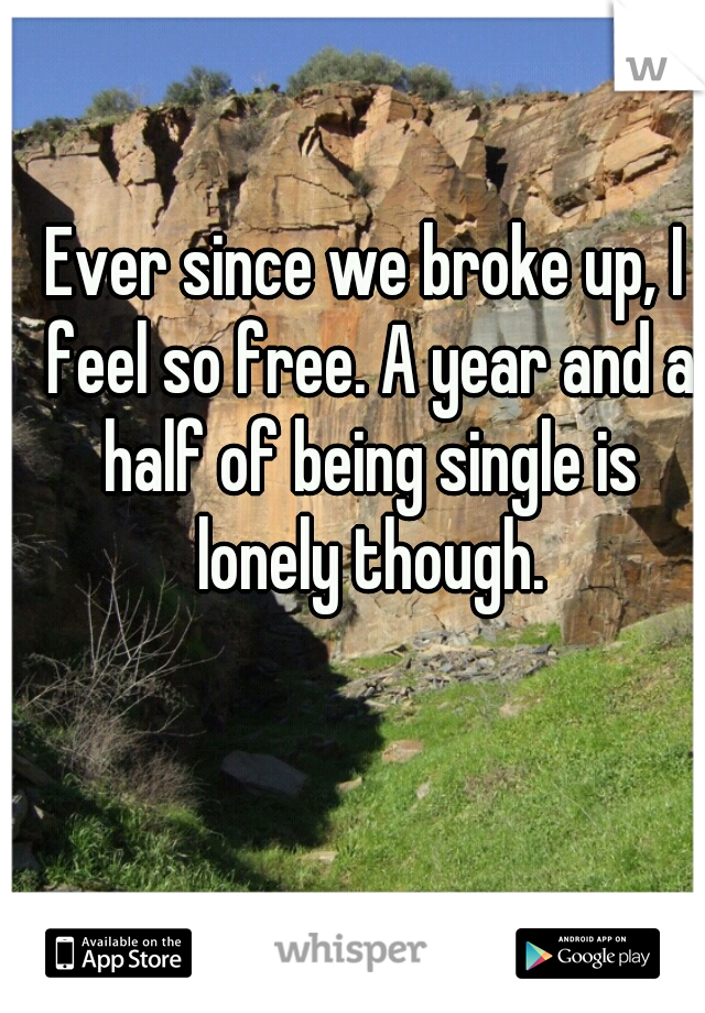Ever since we broke up, I feel so free. A year and a half of being single is lonely though.