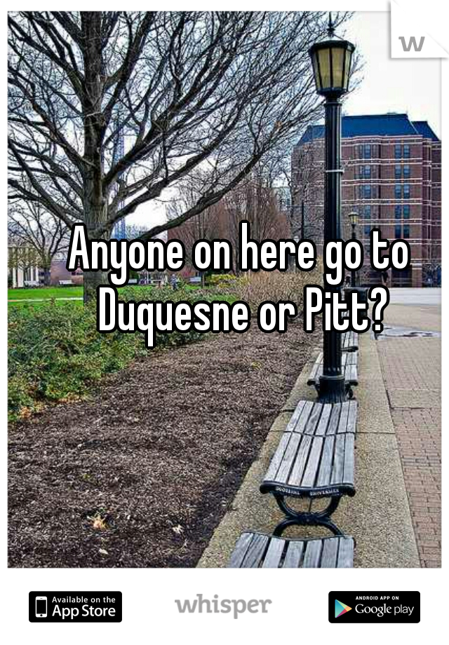 Anyone on here go to Duquesne or Pitt?