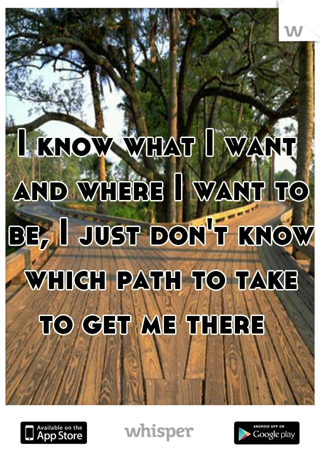 I know what I want and where I want to be, I just don't know which path to take to get me there