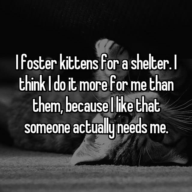 I foster kittens for a shelter. I think I do it more for me than them, because I like that someone actually needs me.