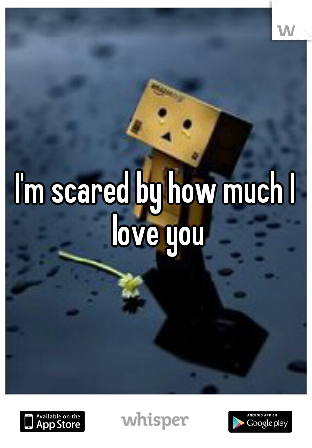 I'm scared by how much I love you