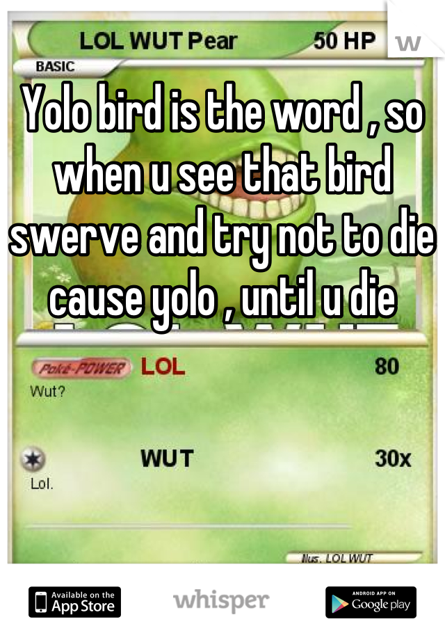 Yolo bird is the word , so when u see that bird swerve and try not to die cause yolo , until u die