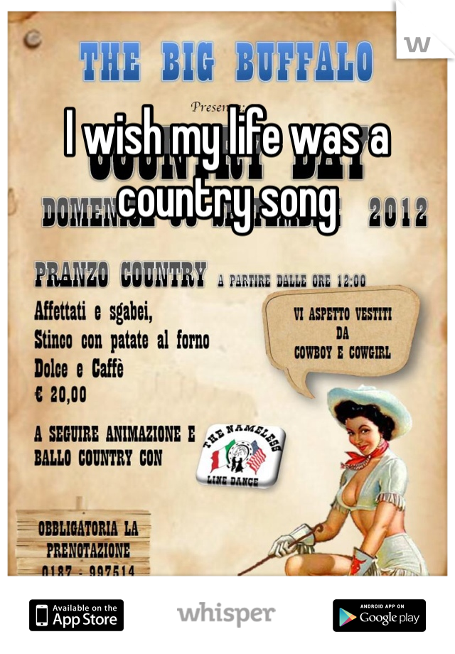 I wish my life was a country song