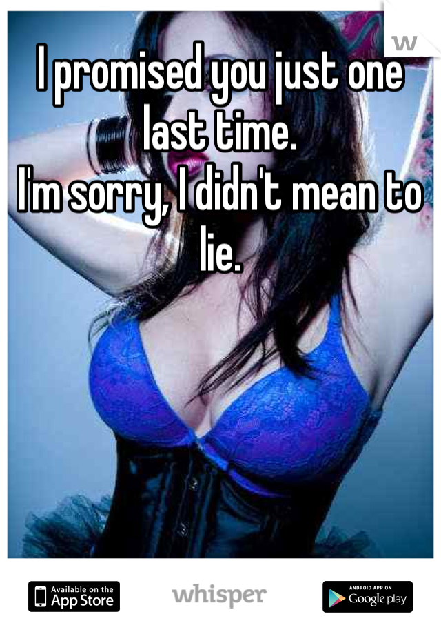 I promised you just one last time. I'm sorry, I didn't mean to lie.