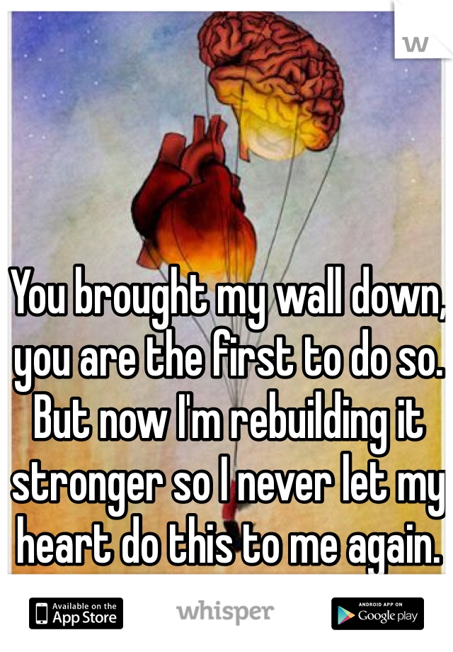 You brought my wall down, you are the first to do so. But now I'm rebuilding it stronger so I never let my heart do this to me again.