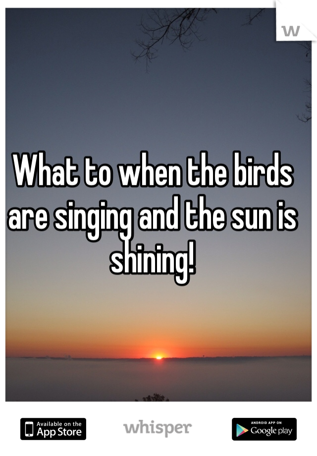 What to when the birds are singing and the sun is shining!