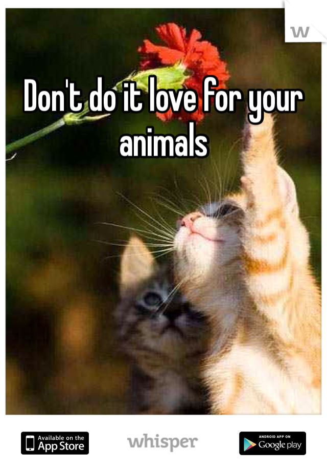 Don't do it love for your animals