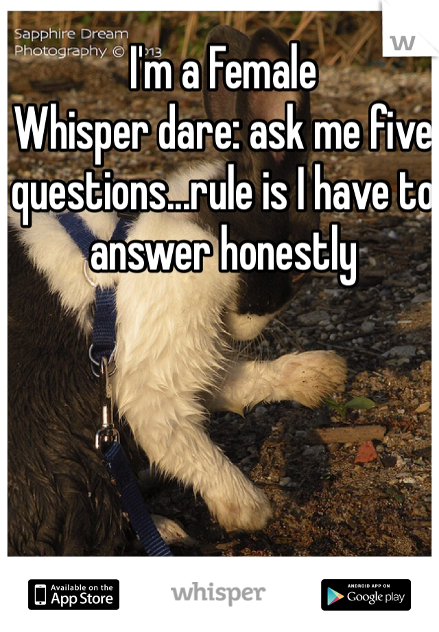 I'm a Female Whisper dare: ask me five questions...rule is I have to answer honestly
