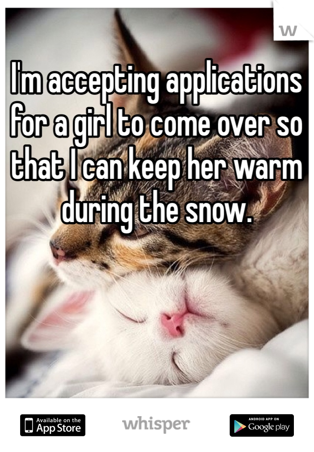 I'm accepting applications for a girl to come over so that I can keep her warm during the snow.