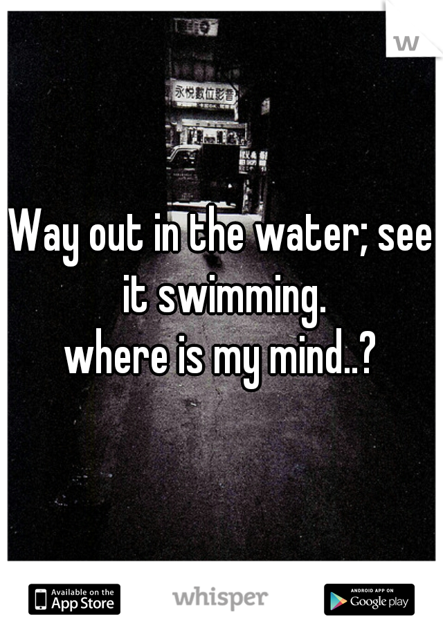 Way out in the water; see it swimming.  where is my mind..?