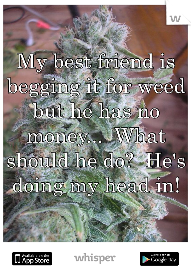 My best friend is begging it for weed but he has no money...  What should he do?  He's doing my head in!
