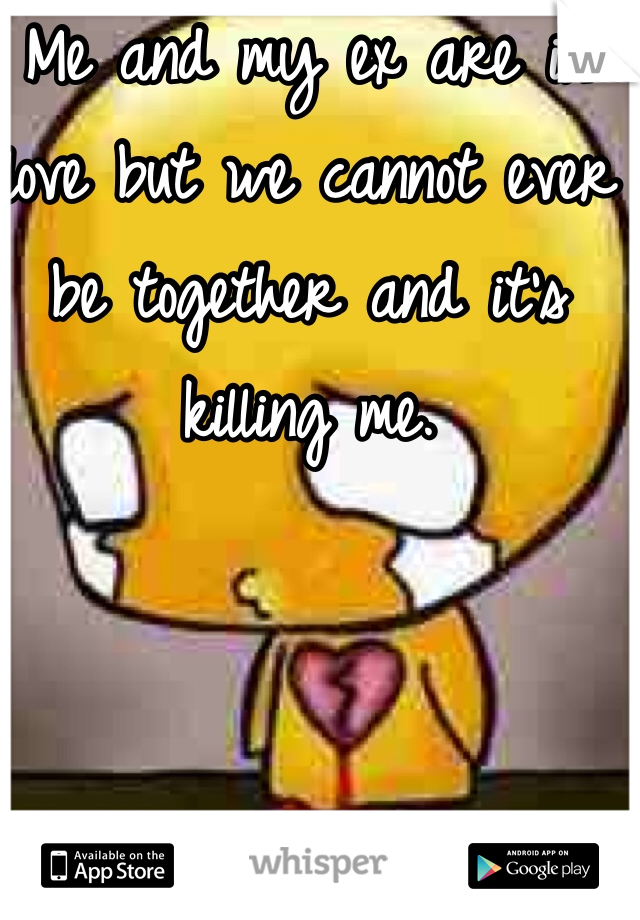 Me and my ex are in love but we cannot ever be together and it's killing me.