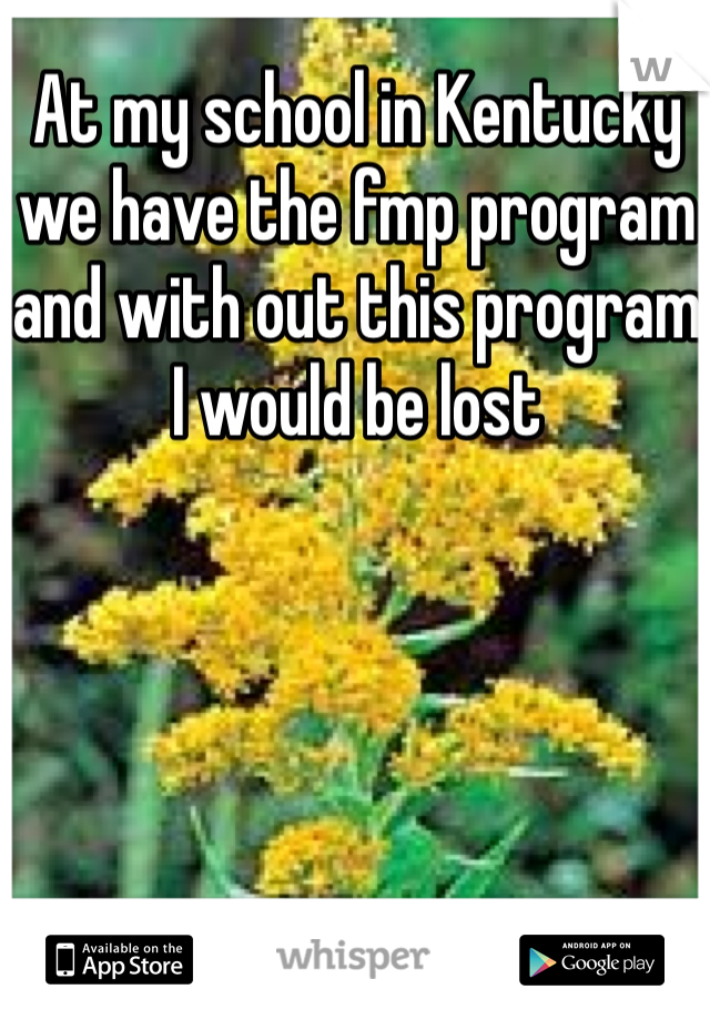 At my school in Kentucky we have the fmp program and with out this program I would be lost