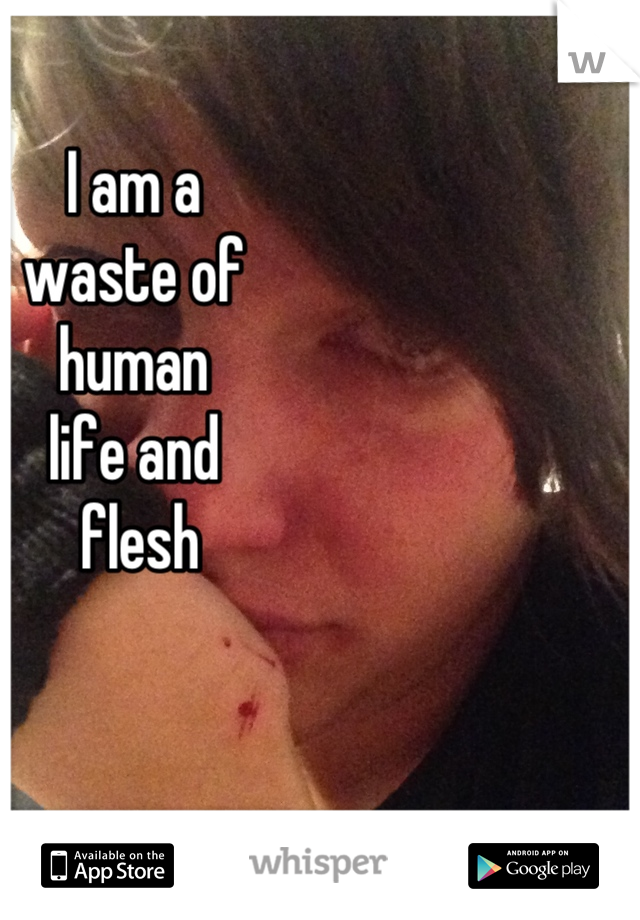 I am a  waste of  human  life and  flesh