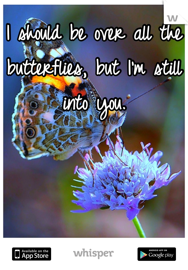 I should be over all the butterflies, but I'm still into you.