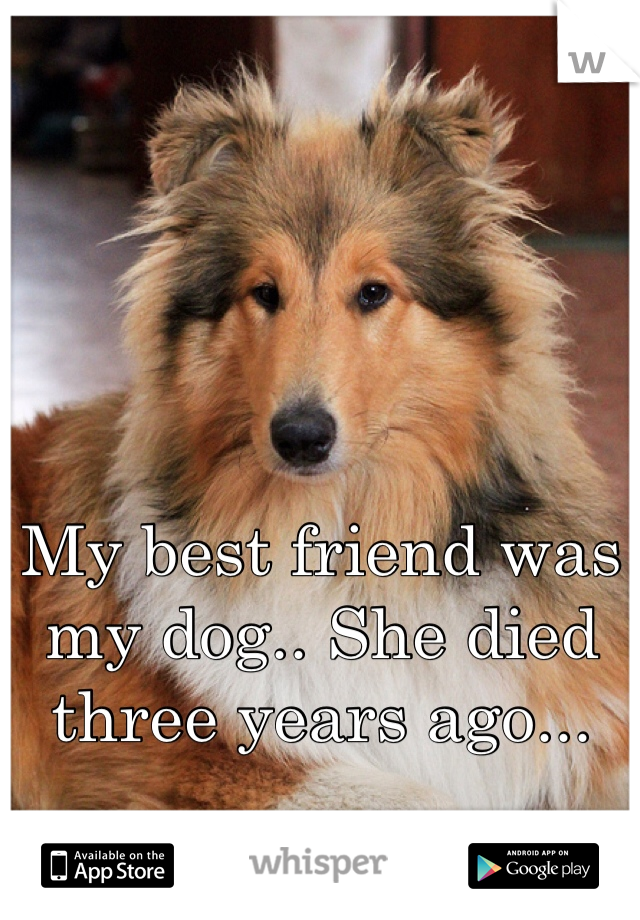 My best friend was my dog.. She died three years ago...