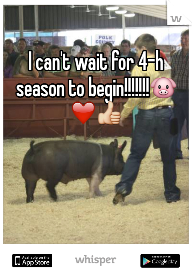 I can't wait for 4-h season to begin!!!!!!!🐷❤️👍
