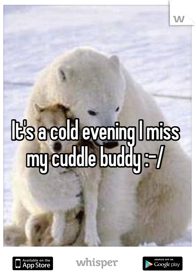 It's a cold evening I miss my cuddle buddy :-/
