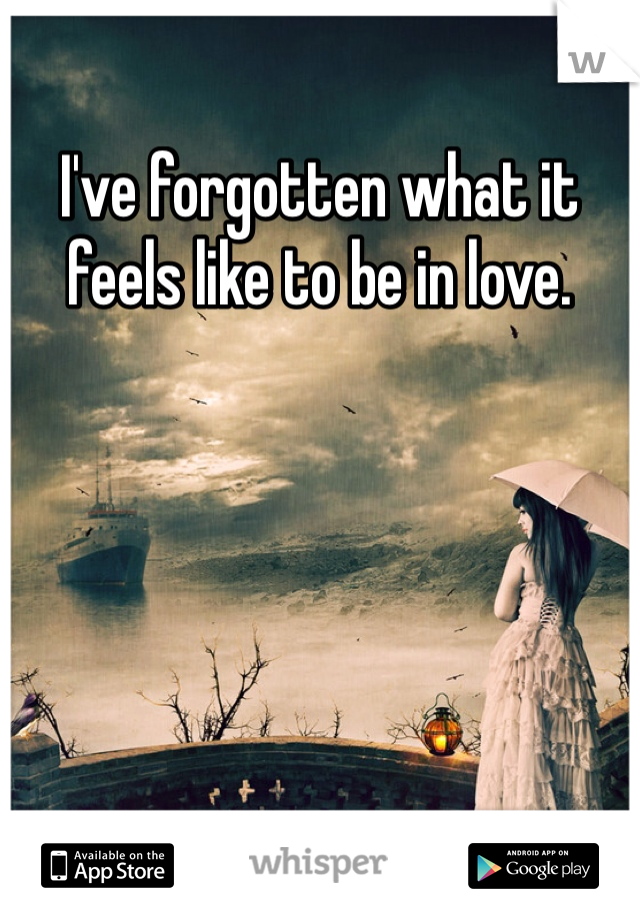 I've forgotten what it feels like to be in love.