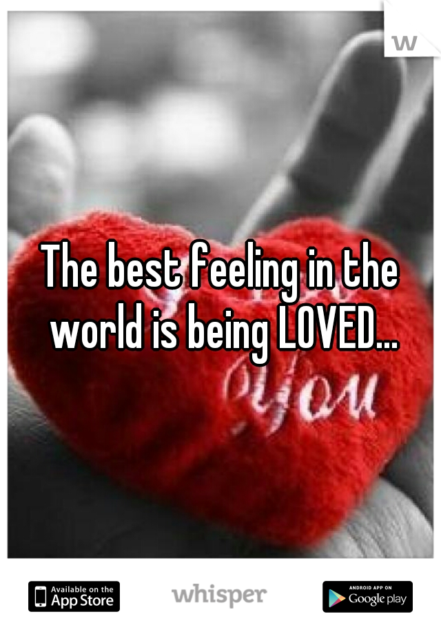 The best feeling in the world is being LOVED...