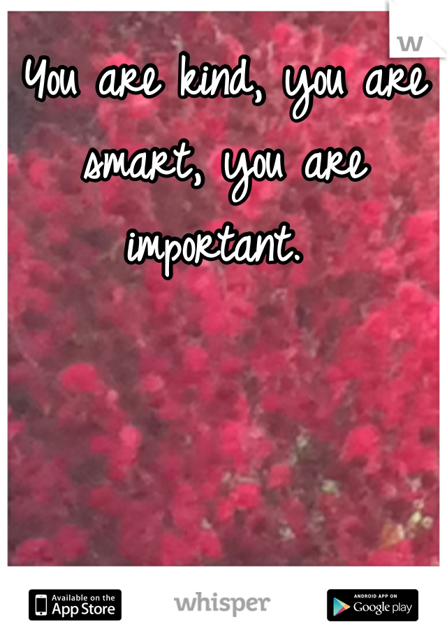 You are kind, you are smart, you are important.