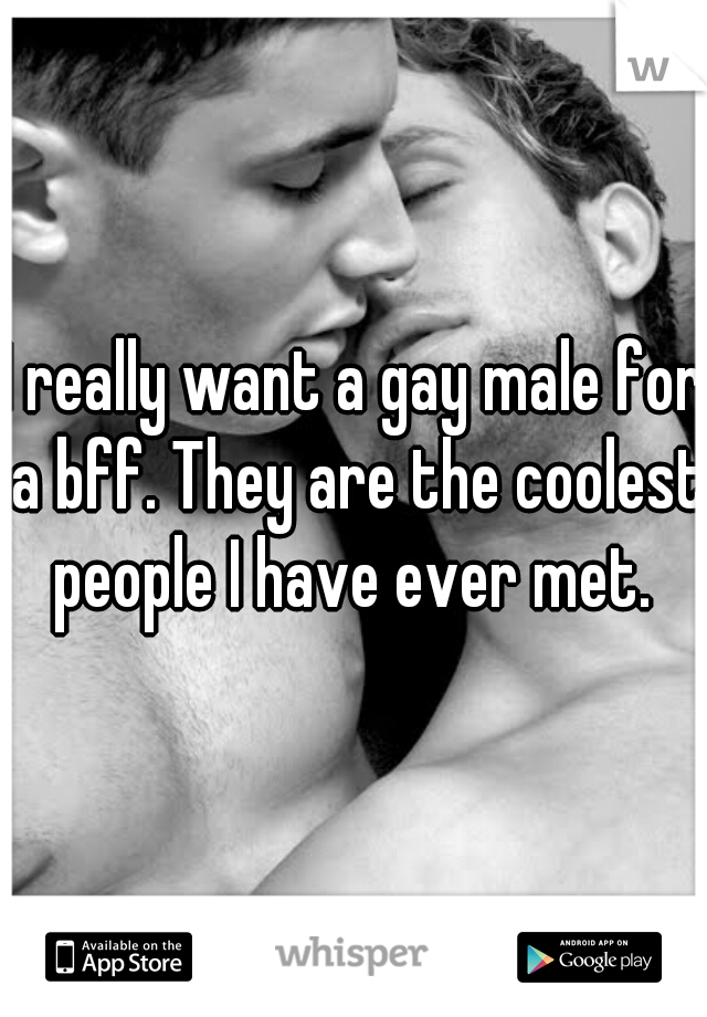 I really want a gay male for a bff. They are the coolest people I have ever met.