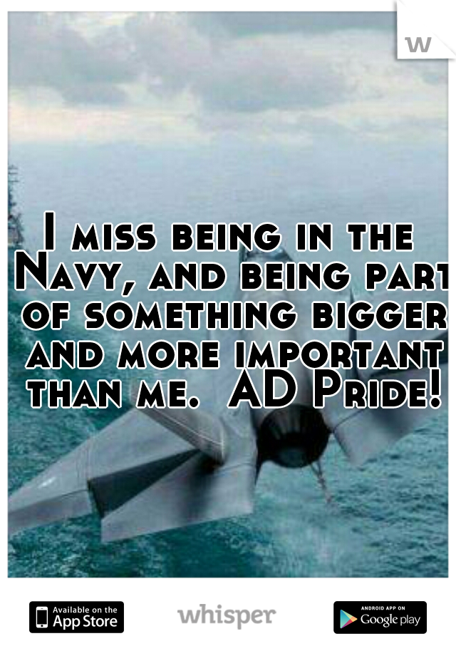 I miss being in the Navy, and being part of something bigger and more important than me.  AD Pride!