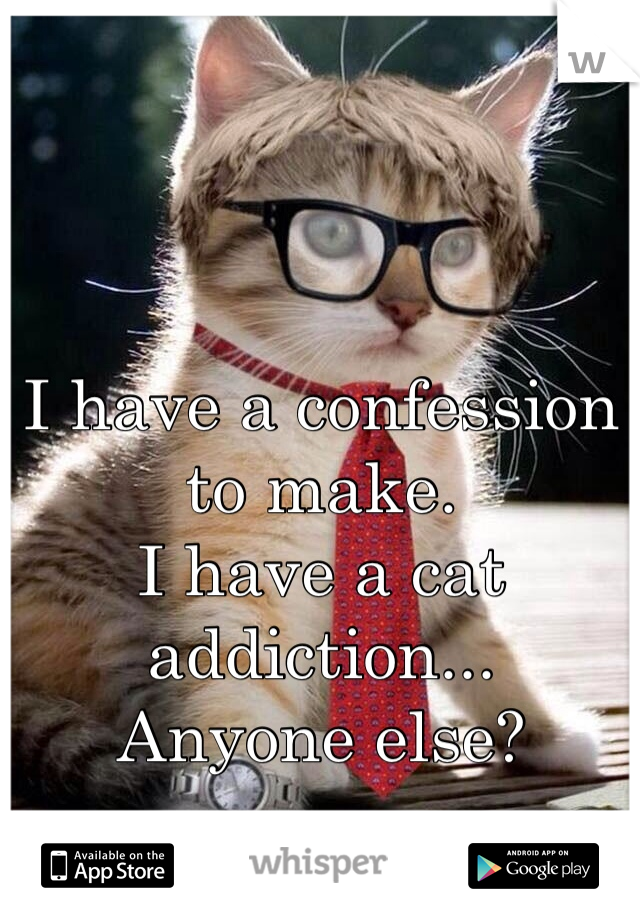 I have a confession to make.  I have a cat addiction...  Anyone else?