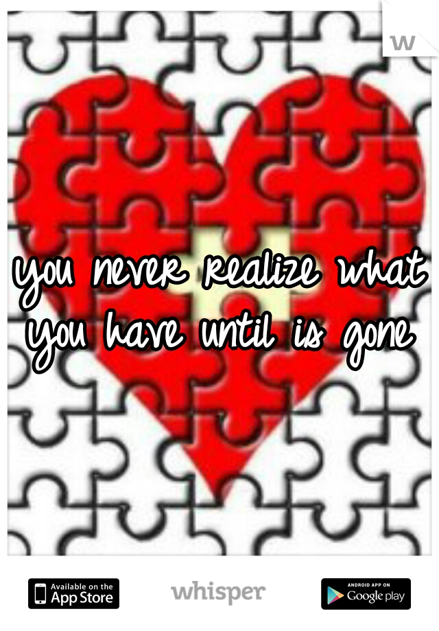 you never realize what you have until is gone