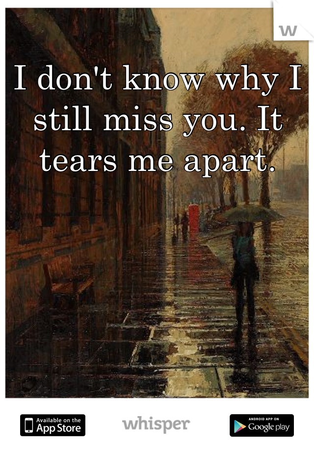 I don't know why I still miss you. It tears me apart.